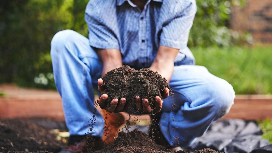 How to compost: Don't waste your waste