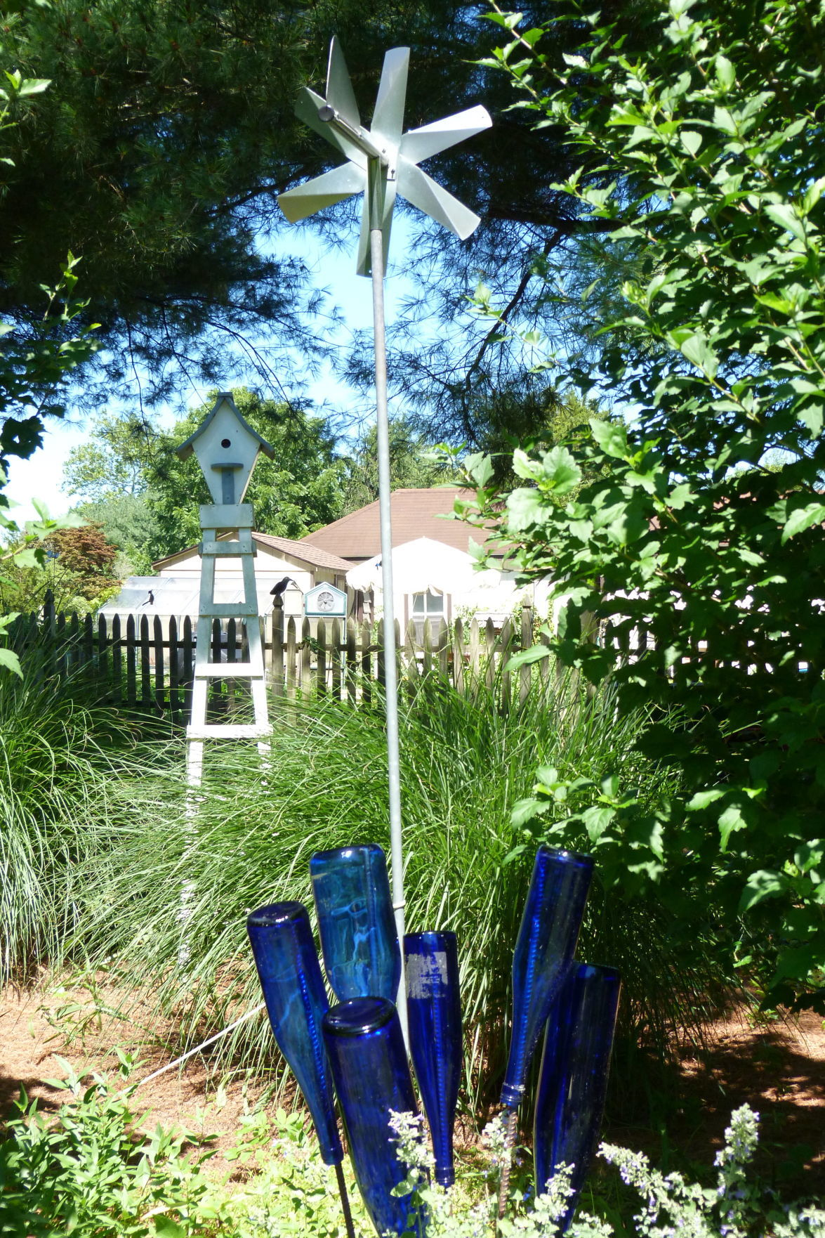071319_liv_Little Gardens 18 Mainland Focus (23)