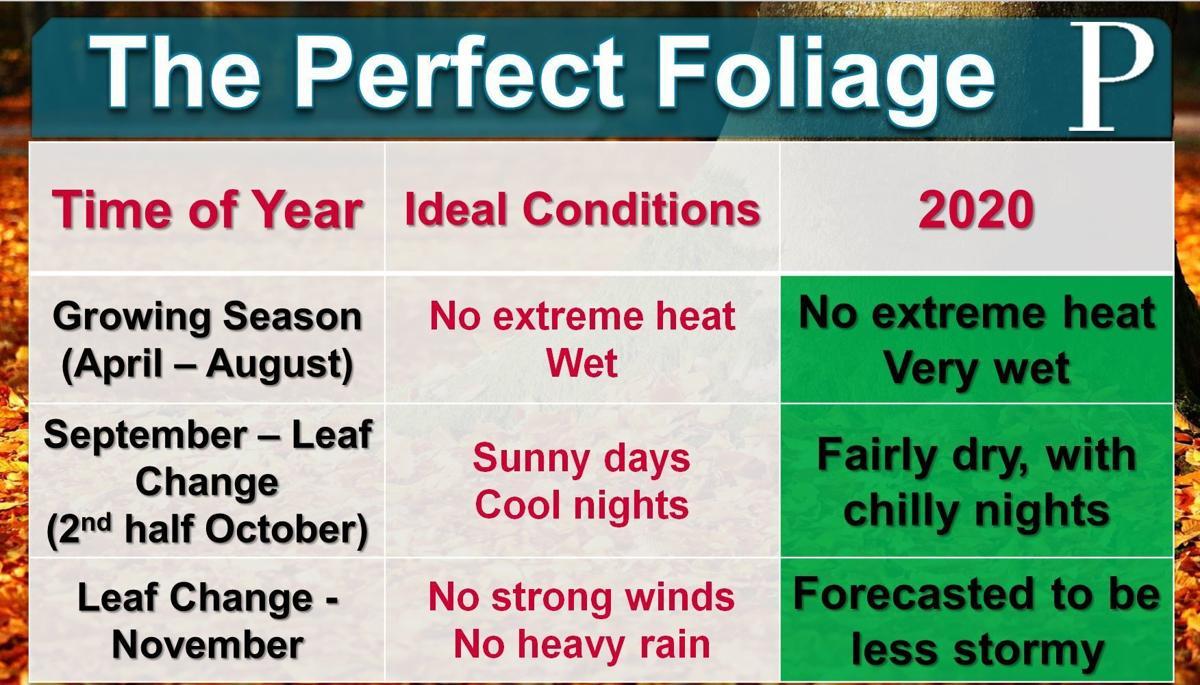 Fall Foliage 2020 Forecast
