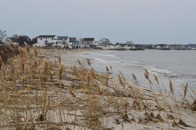 Middle planning eco-tourism improvements at Reeds Beach