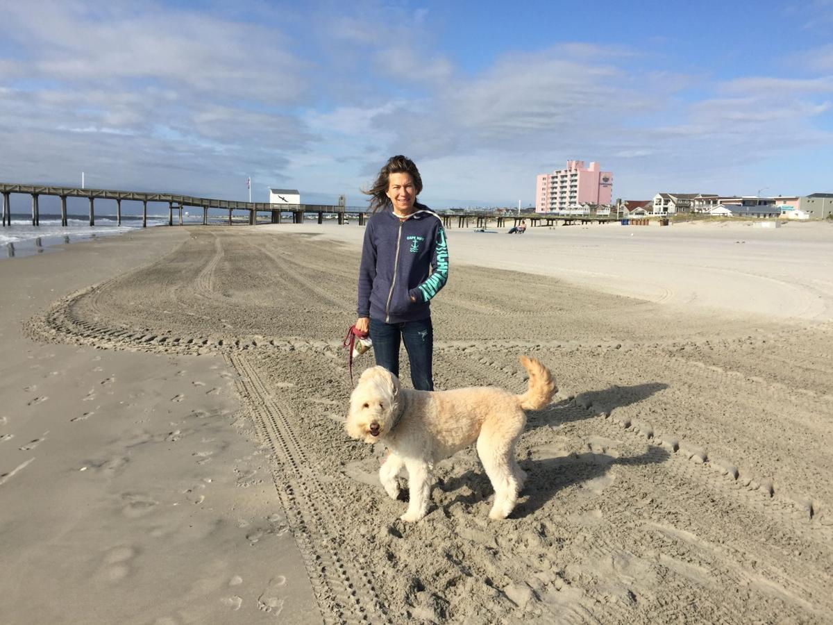 ocean city councilman drops summer dog beach idea cape may county