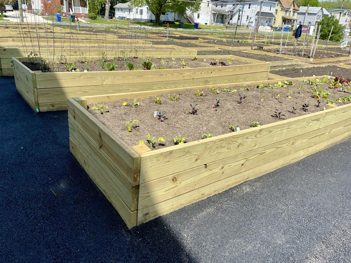 Glassboro Community Garden