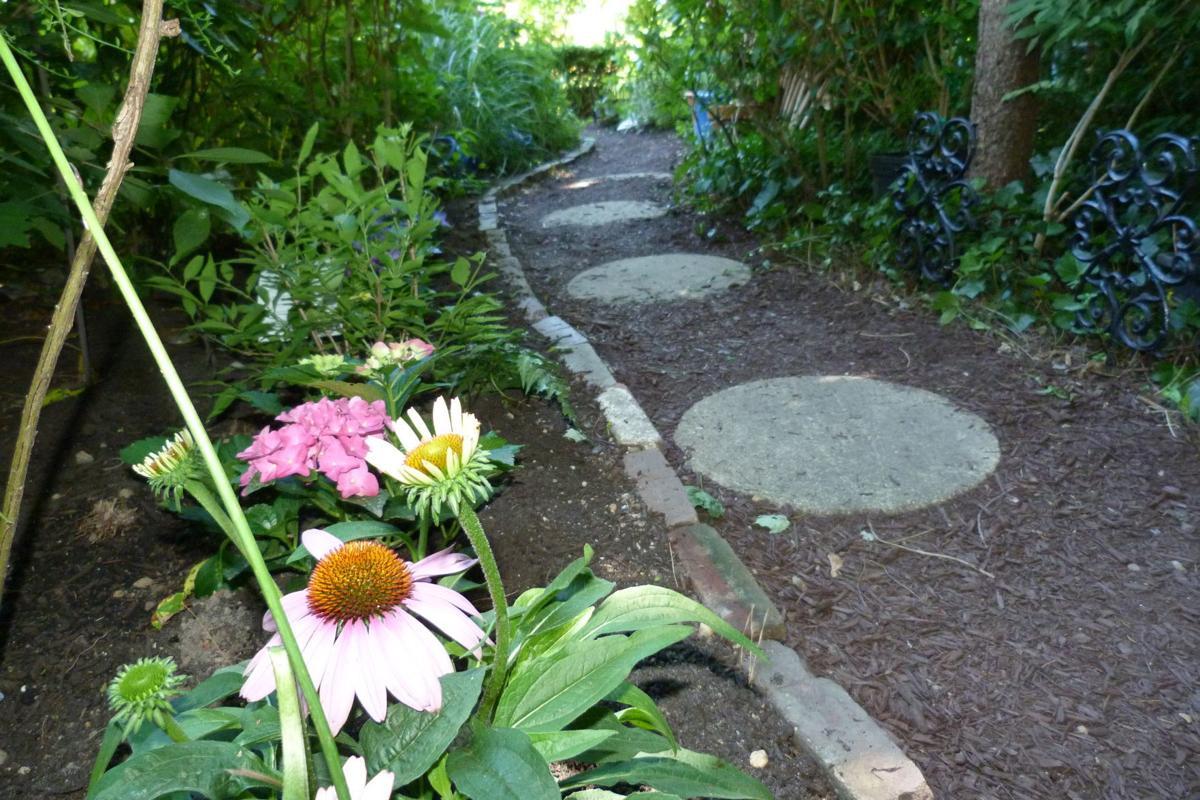 071319_liv_Little Gardens 18 Mainland Focus (15)