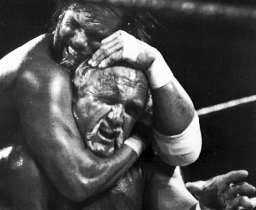 Wrestler Randy 'Macho Man' Savage dies in car wreck