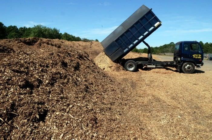 hamilton tree landfill