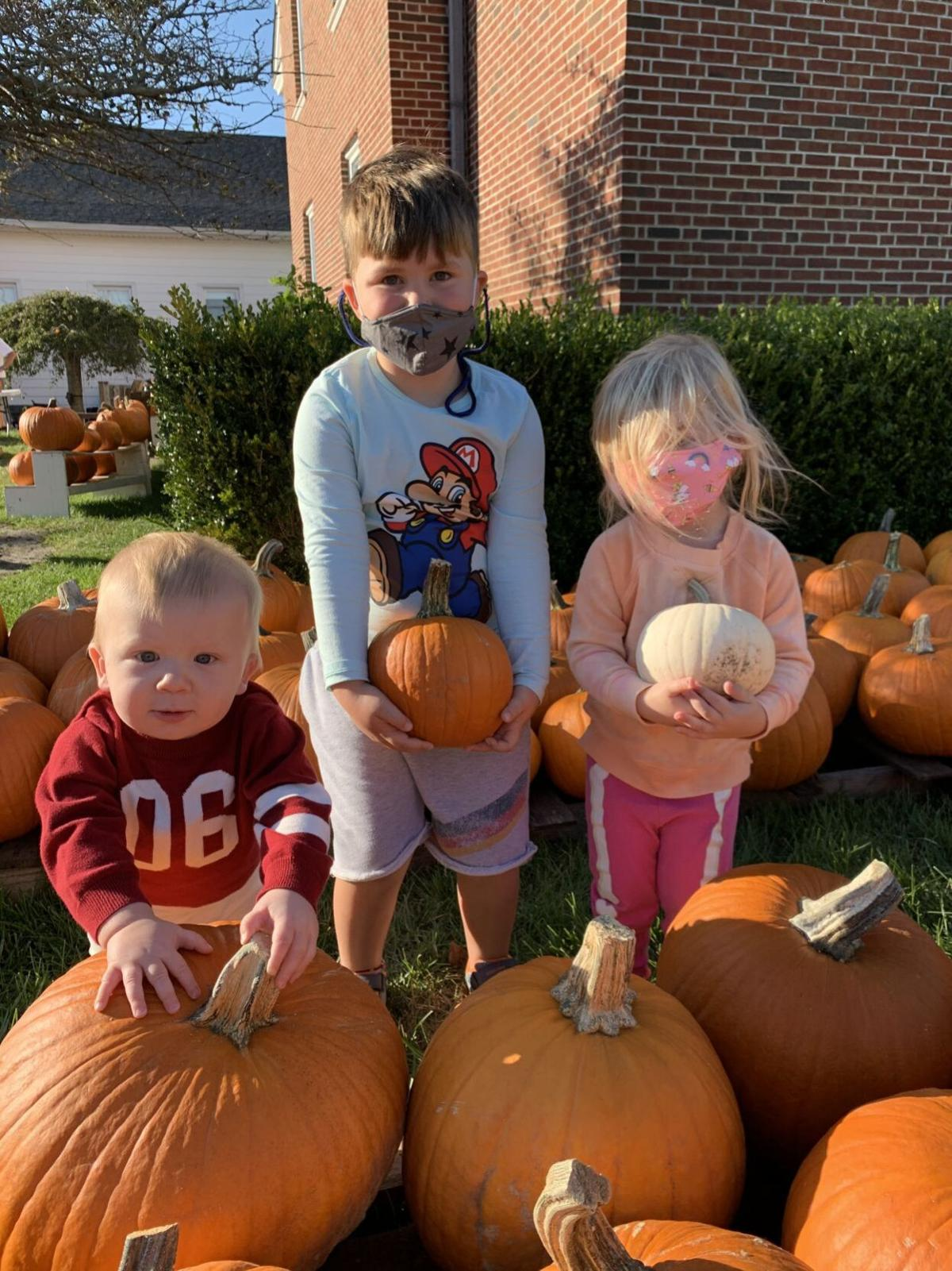 100120_lns_pumpkins Central M pumpkins 1