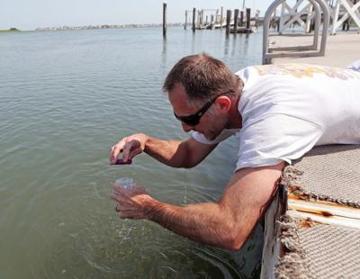 ACUA test water in ocean and bay