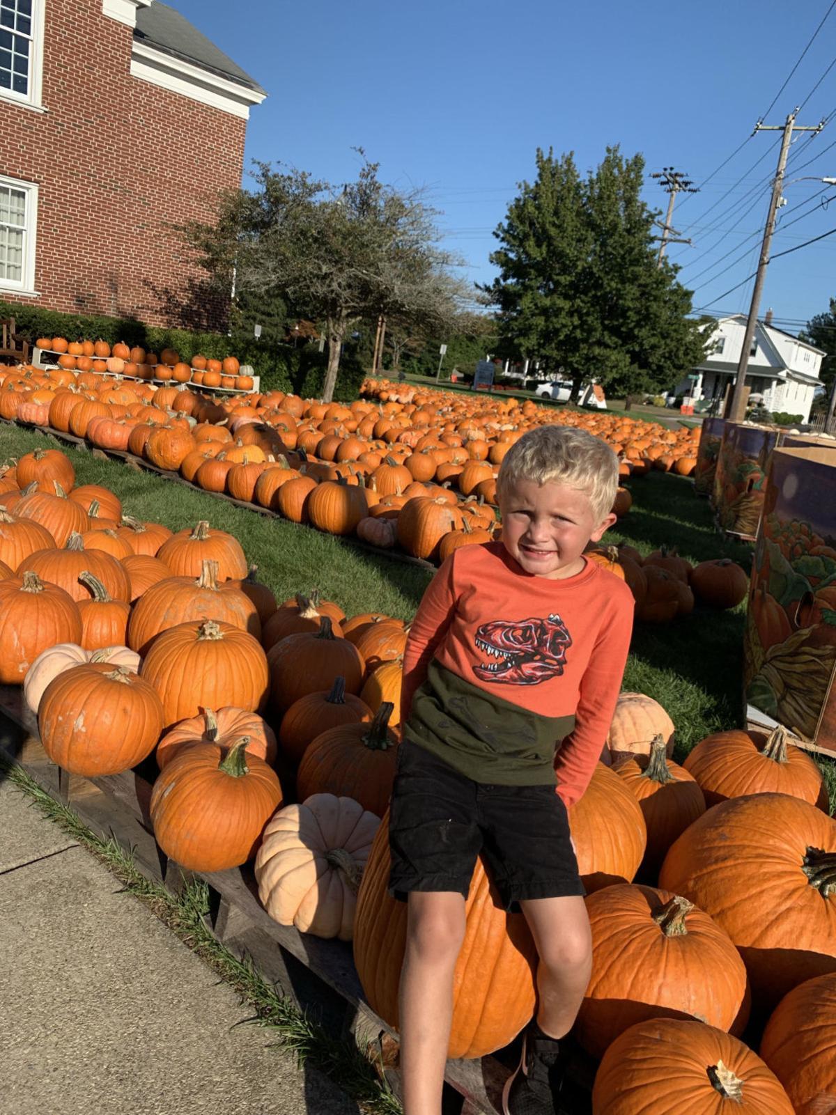 100319_lns_pumpkins 2