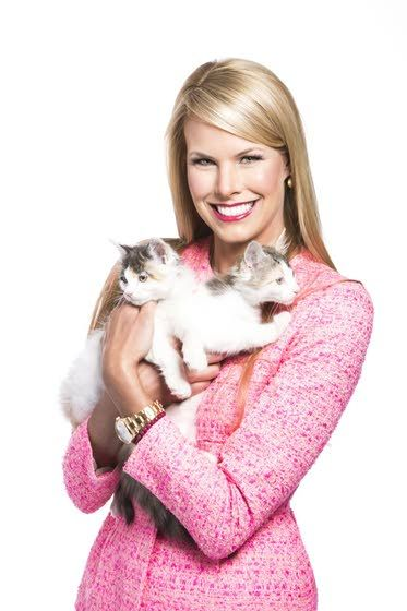 Kitten Bowl is back and bigger  than ever, host Beth Stern says
