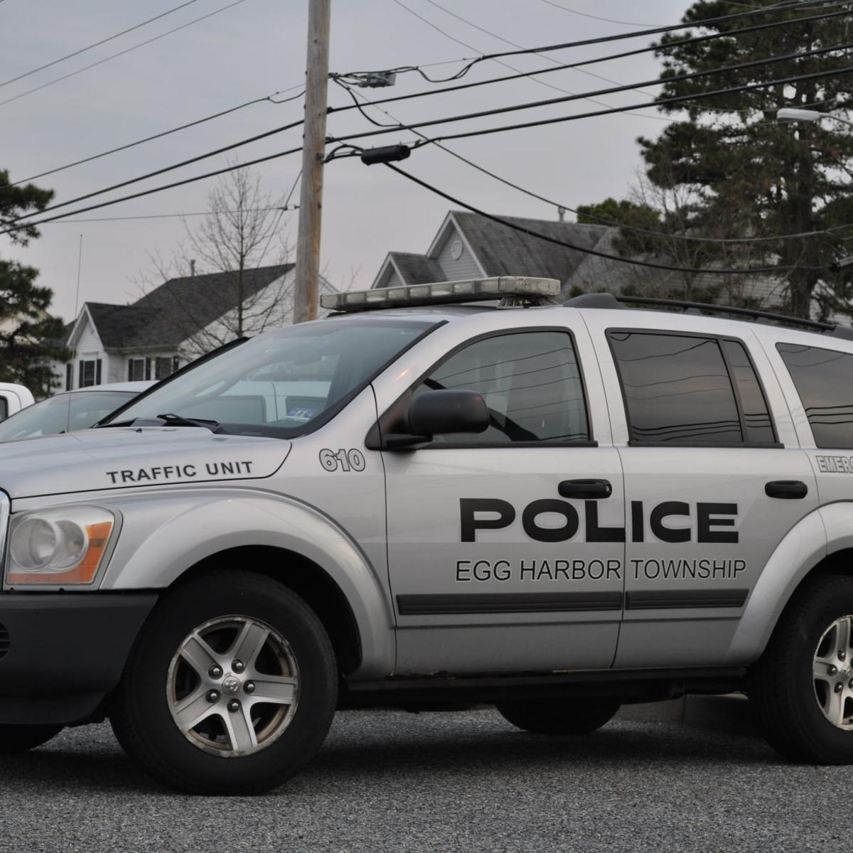Egg Harbor Township Police Blotter - December 2018 | Cat