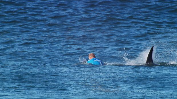 VIDEO: Watch pro surfer survive shark attack during competition