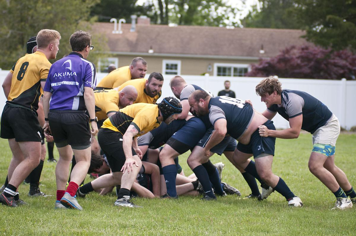 Galloway Rugby