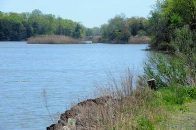 Cohansey River in Bridgeton