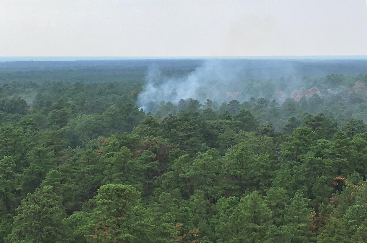 Wharton State Forest fire ignited by lightning | News ...