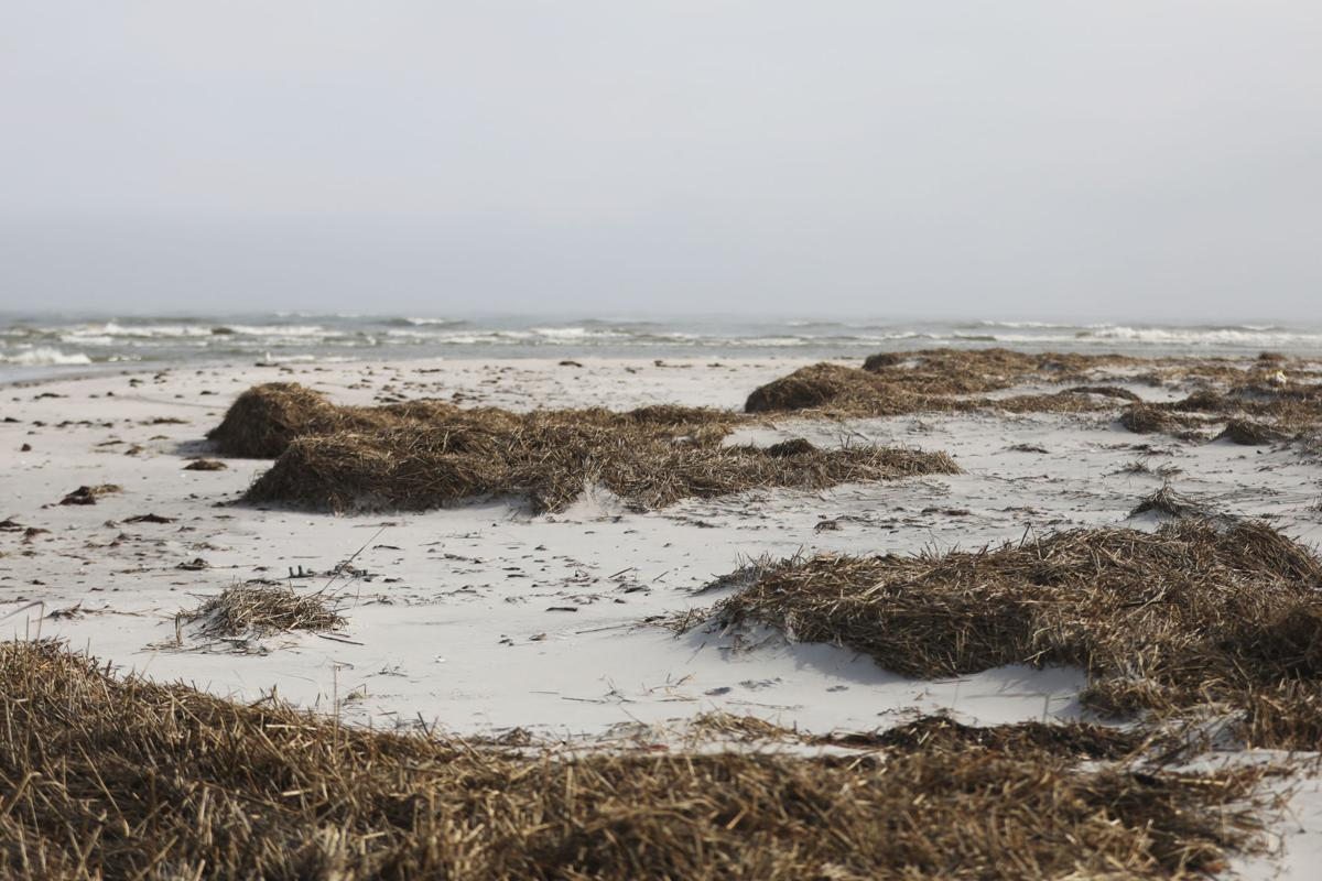 Brigantine beach permits