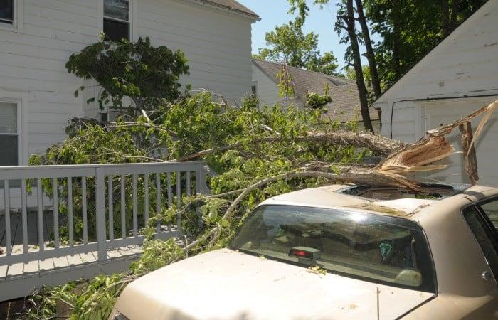 Bridgeton Storm