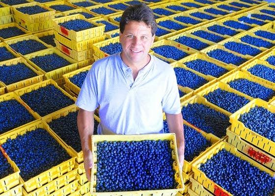 ACC - Case 2-1 Bar Harbor Blueberry Farm