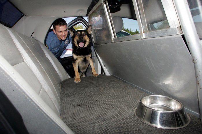 K9 officer Justin M. Cherry and Gunner