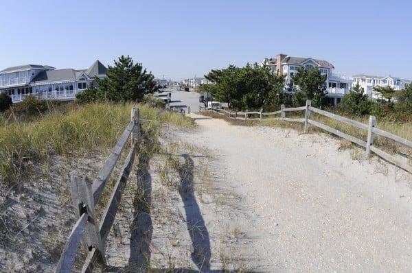 Avalon dunes