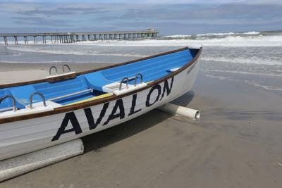 Avalon Partly Sunny Summer Beach