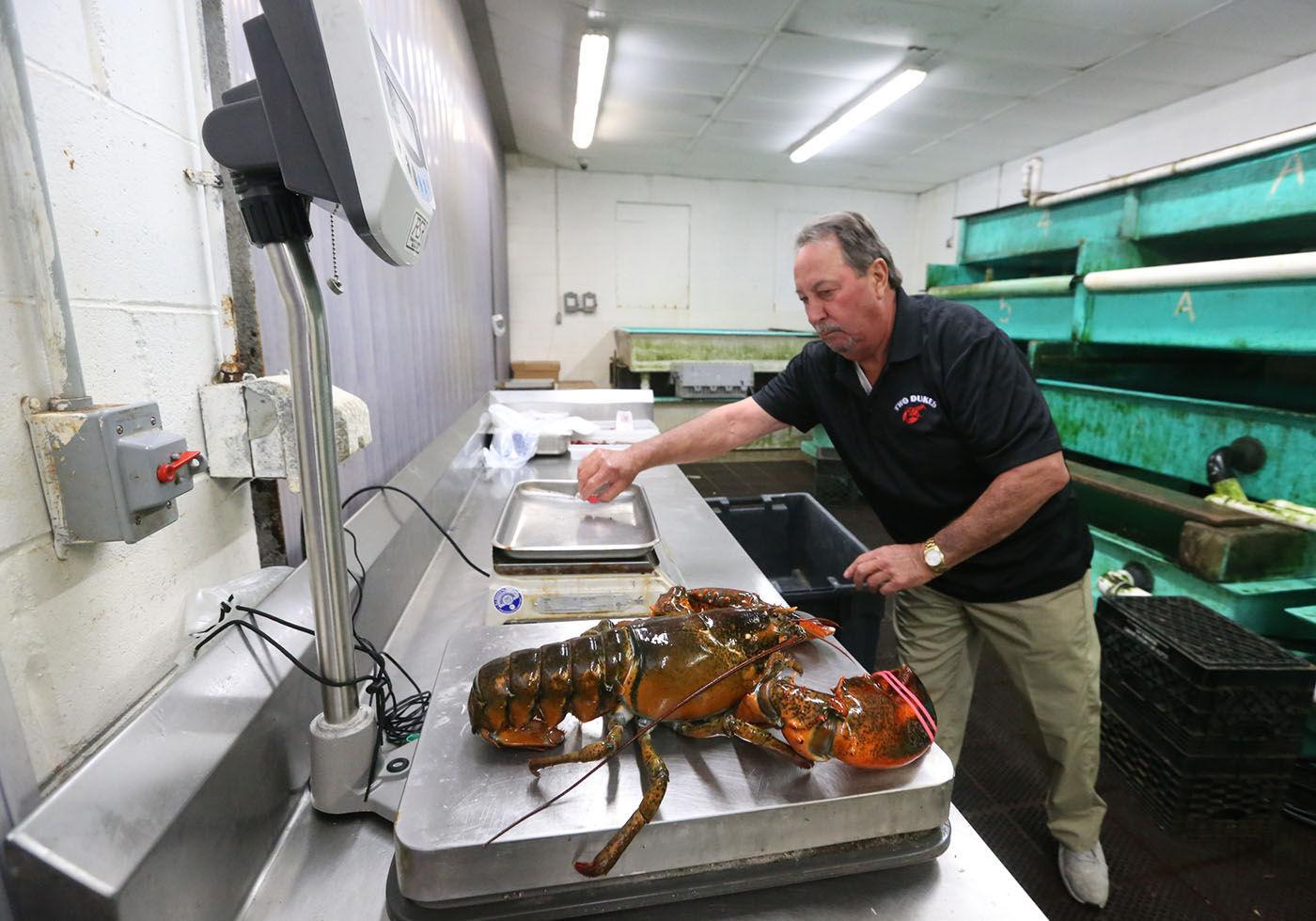Casino lobster pleasantville casino las mylasvegas1.us vacation vegas