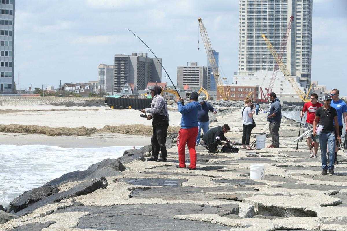 Gallery fishing for blue fish in atlantic city news for Atlantic city fishing