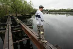 River herring are becoming tougher to find