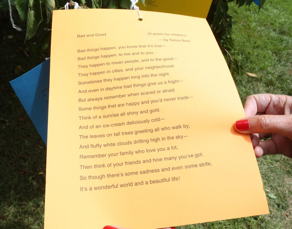 English professor's 'poet-tree' sheds literature in Cape May