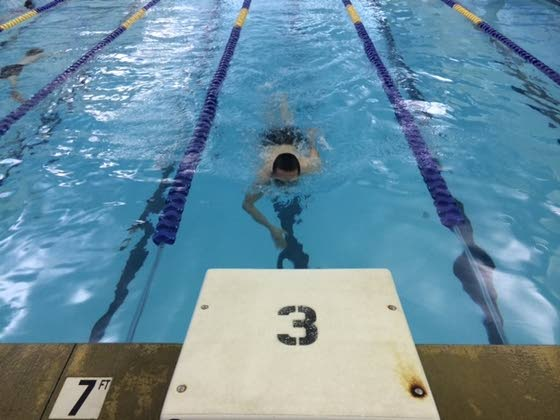 Mainland freshman excels at swimming