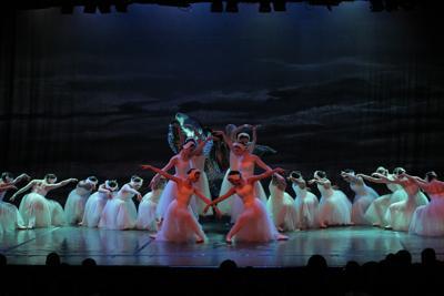 AC Ballet Swan