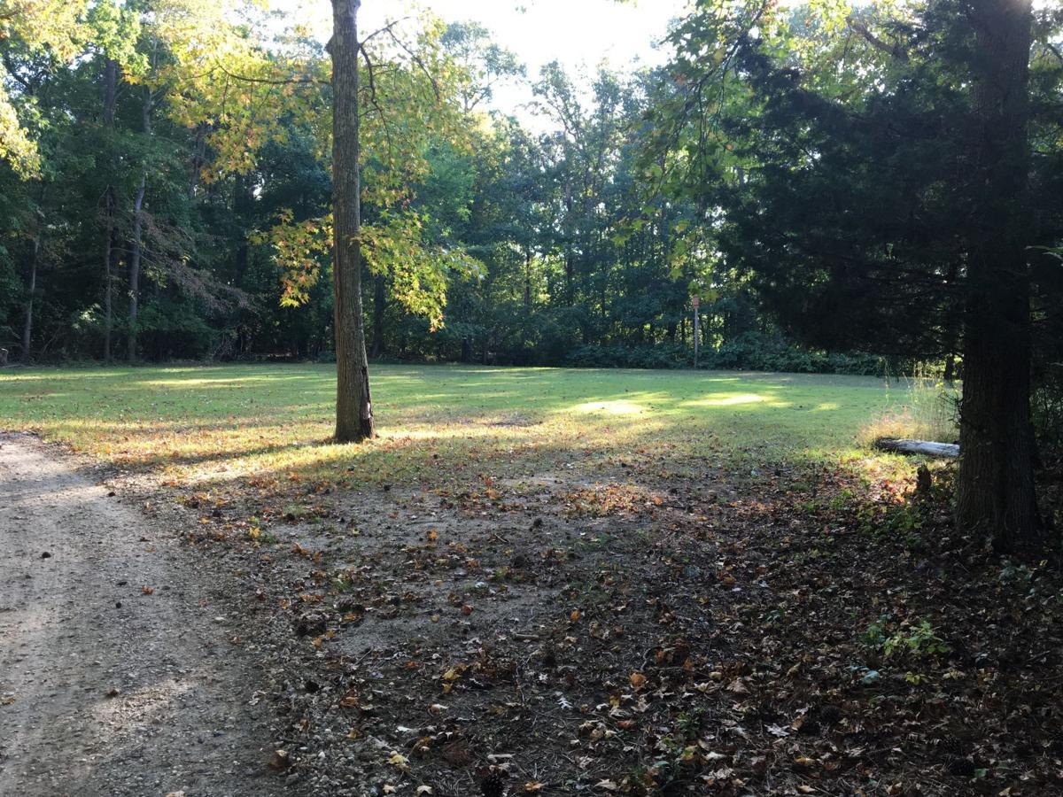Northfield dog park