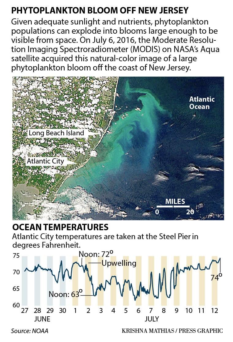 Ocean temperatures June July 2016