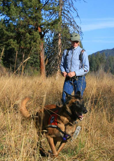 Biologists turn to dogs to help understand wildlife