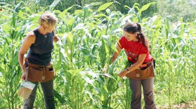Dream of Wild Health triples acreage as need for food grows