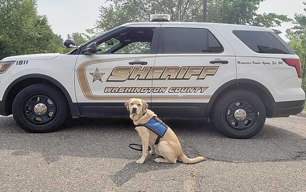 A new kind of police K-9 member of crisis response team