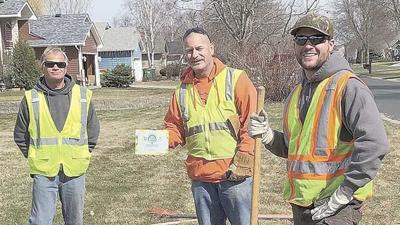 Lino Lakes named Tree City USA for 30th year
