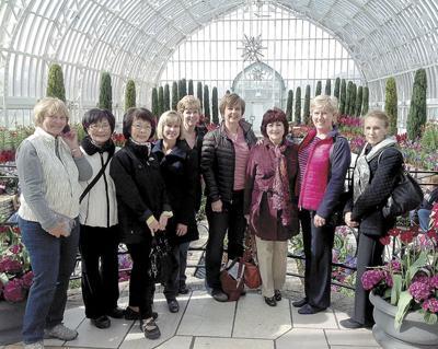 Garden Club Members Go On A Tour Of Como Park S Bonsai And Japanese Garden North Oaks Presspubs Com