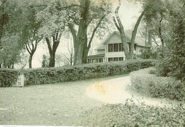 Grandpa-tree-1927.jpg