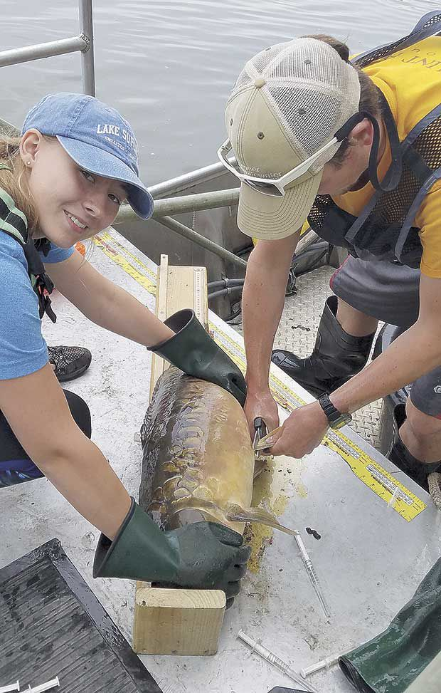 Common carp and water-quality trends on Pleasant Lake