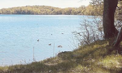 Keeping Pleasant Lake pleasant is not an easy task