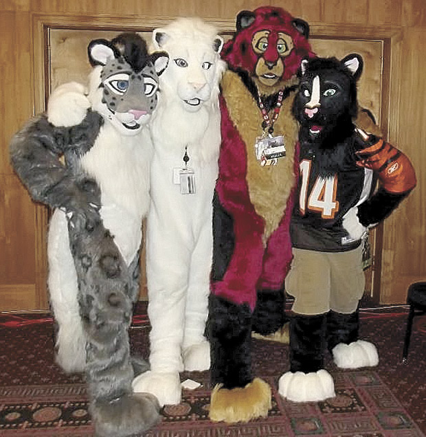 Custom-made cat suits