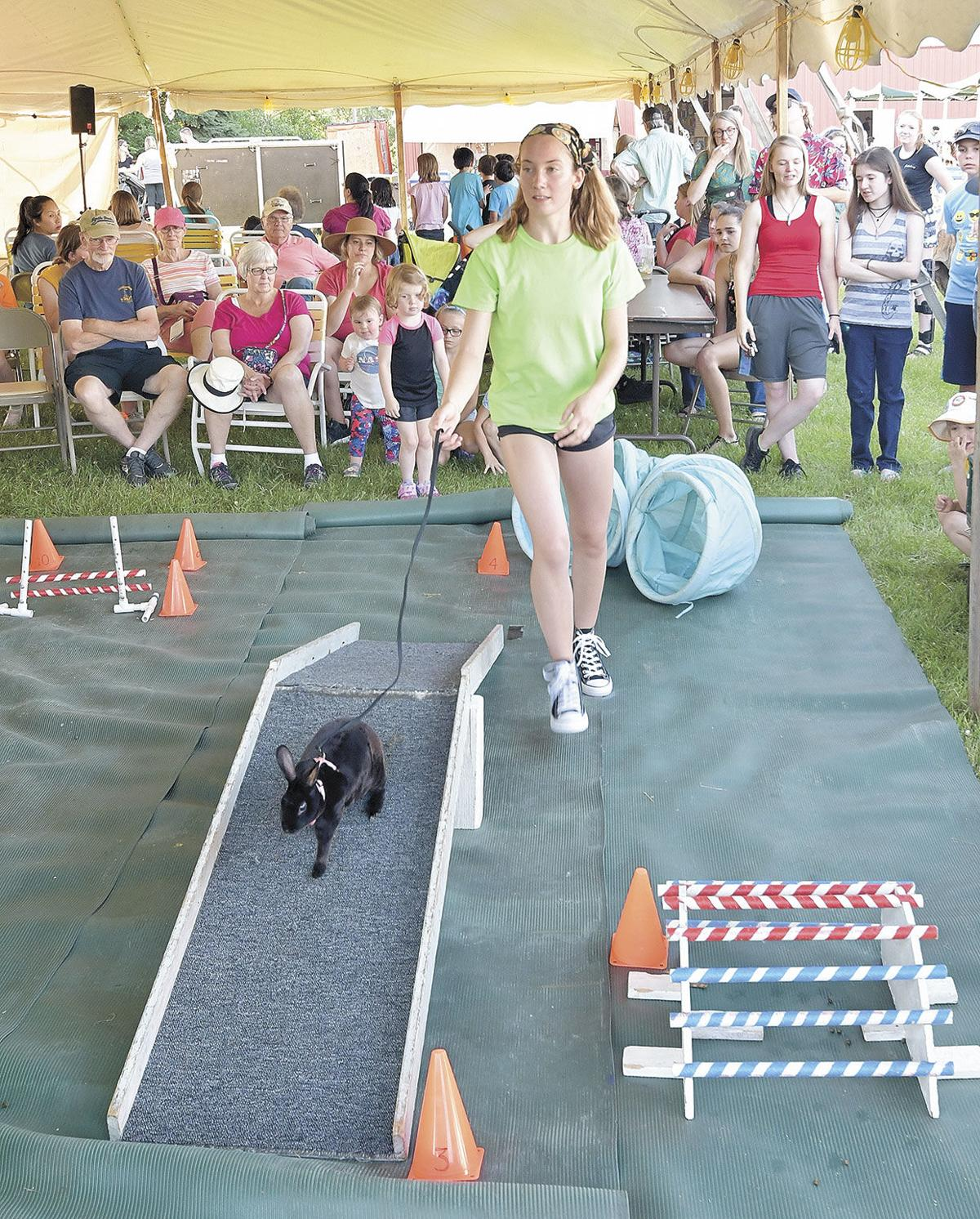 Proud pet owners compete at the fair