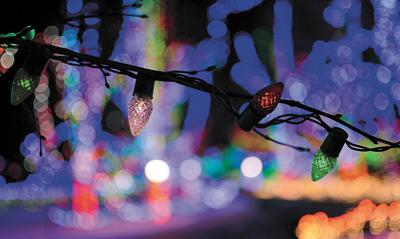 Vote for your favorite holiday lights