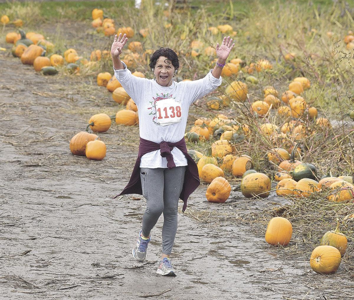 Apple Orchard Run