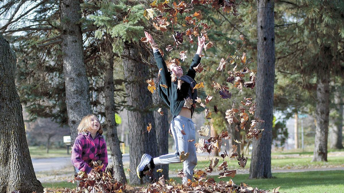 Free falling fun-seekers