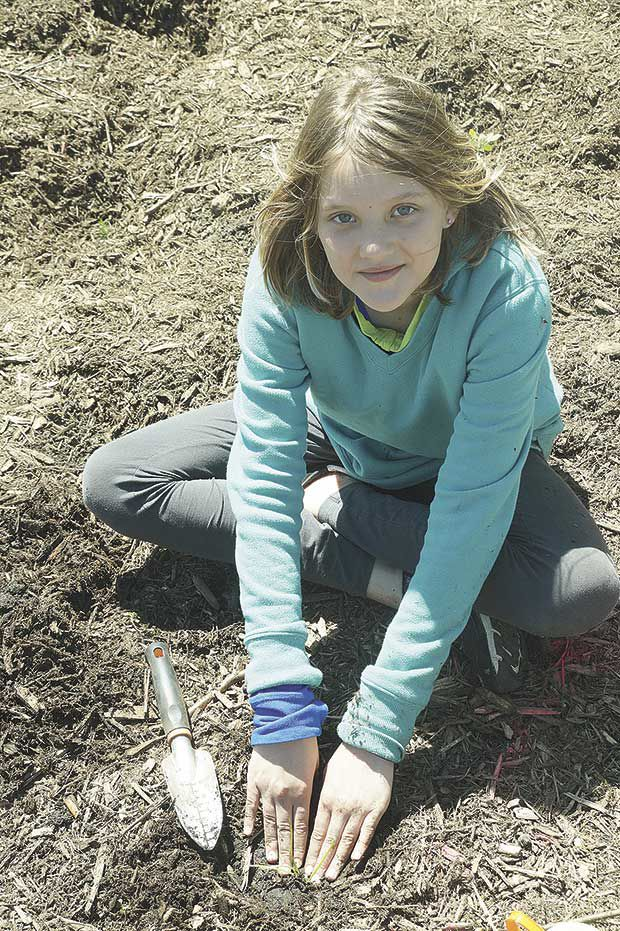 Students plant for the future of pollinator