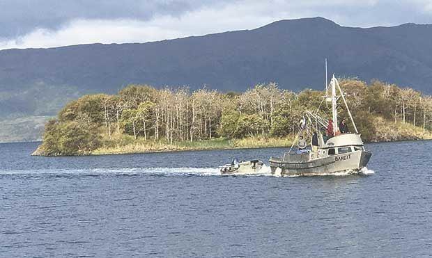 DWL-Bandit-after-day-1-of-fishing.jpg