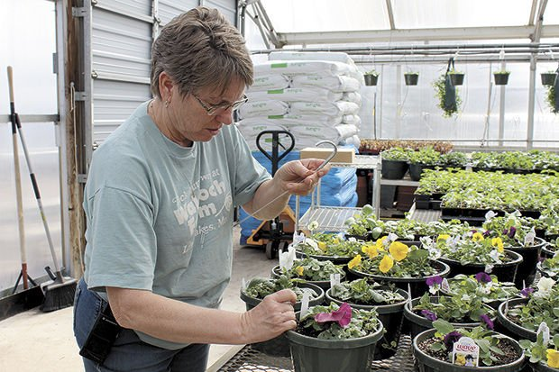 Waldoch Farm Garden Center to celebrate 100th year
