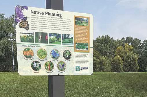 Native plants take root at Community Park