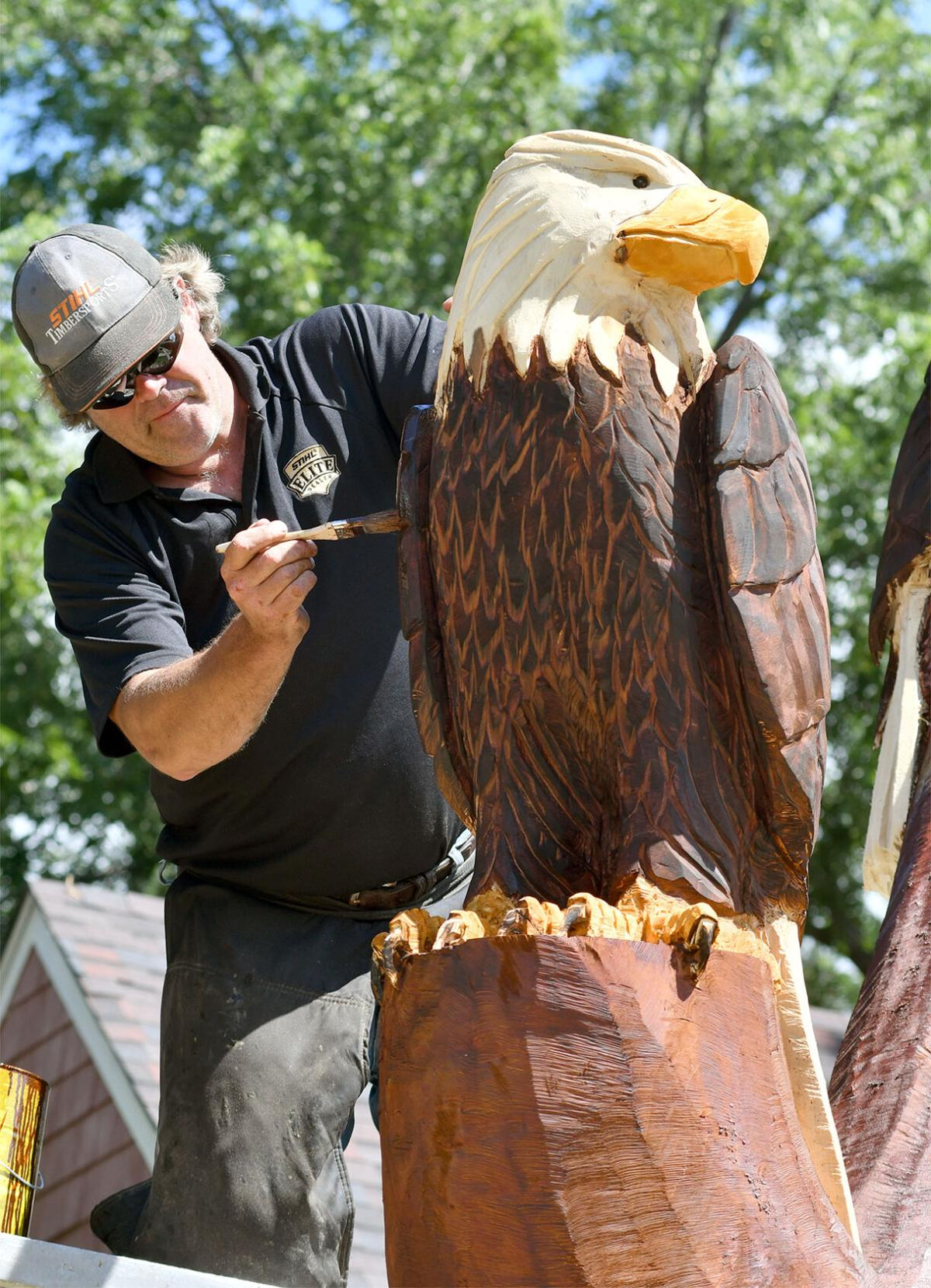 Eagles landing in downtown White Bear Lake